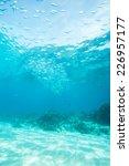 school of jack fish in dimakya... | Shutterstock . vector #226957177