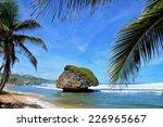 Bay Of Bathsheba  East Coast O...