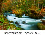 Oirase River In Aomori  Japan