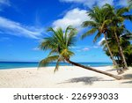 Palms On The White Beach And A...