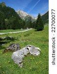beautiful alpine meadows and... | Shutterstock . vector #22700077