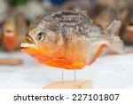 Piranha Trophy In The Market O...