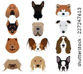set of dog vectors and icons... | Shutterstock .eps vector #227247613