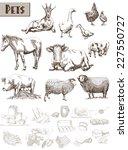 farm animals. set of vector... | Shutterstock .eps vector #227550727