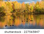 Colorful Fall foliage on Holiday Lake in Manalapan New Jersey.