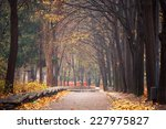 autumn in the park | Shutterstock . vector #227975827