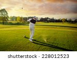 professional male golf player... | Shutterstock . vector #228012523