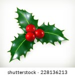 holly  traditional christmas... | Shutterstock .eps vector #228136213