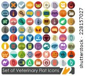 set of veterinary flat icons | Shutterstock .eps vector #228157027