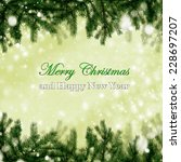 christmas card  | Shutterstock . vector #228697207