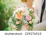 bride and groom holding wedding ...   Shutterstock . vector #229276513