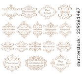 vector set   calligraphic... | Shutterstock .eps vector #229361467