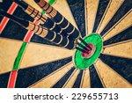 vintage retro effect filtered... | Shutterstock . vector #229655713