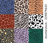 repeated wild animal print... | Shutterstock .eps vector #229879633