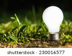 light bulb growing on the... | Shutterstock . vector #230016577
