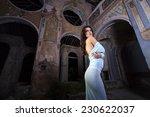 beautifull girl in vintage... | Shutterstock . vector #230622037