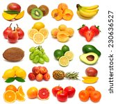 collection of fresh fruits... | Shutterstock . vector #230636527