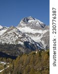 Small photo of Autumn time - Rhaetian Alps near the driveway to the Albula Pass