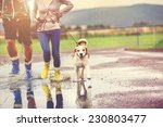 young couple walk dog in rain.... | Shutterstock . vector #230803477