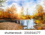 Mountain Stream  Forest Autumn...