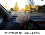 drivers eyes | Shutterstock . vector #231315403