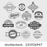 set of vector abstract vintage... | Shutterstock .eps vector #231926947