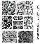 print of animal skins  vector... | Shutterstock .eps vector #231948493