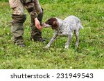 Small photo of truffle sniffing dogs to find truffle