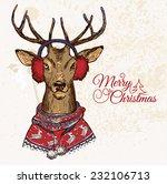 hand drawn vector illustration... | Shutterstock .eps vector #232106713