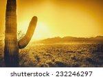 Epic Desert Sunset Over Valley...