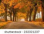 mazuren autumn | Shutterstock . vector #232321237