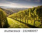 Styrian Tuscany Vineyard At...