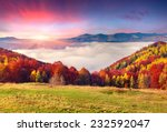colorful autumn morning in the... | Shutterstock . vector #232592047