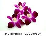 thai orchid flowers | Shutterstock . vector #232689607
