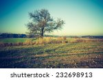vintage photo of rural green... | Shutterstock . vector #232698913