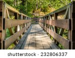 Wooden Footbridge In A Park