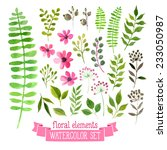 vector floral set. colorful... | Shutterstock .eps vector #233050987