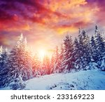 great view of winter landscape... | Shutterstock . vector #233169223