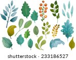 collection of beautiful hand... | Shutterstock . vector #233186527