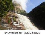 Base Of Angel Falls   Venezuela