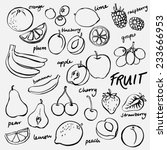 group of fresh fruit doodle...