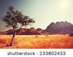 african landscapes | Shutterstock . vector #233802433
