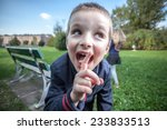 kids playing in the park on a... | Shutterstock . vector #233833513