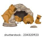 Illustration Of Bear Vector