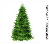 spruce on a white background... | Shutterstock .eps vector #234999853