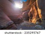 The Israeli Desert