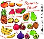 tropical fruit set vector...   Shutterstock .eps vector #235832803