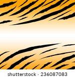 textured of bengal tiger fur... | Shutterstock .eps vector #236087083