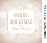 merry christmas and happy new... | Shutterstock .eps vector #236111557
