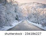 Scenic Winter Road Through Icy...